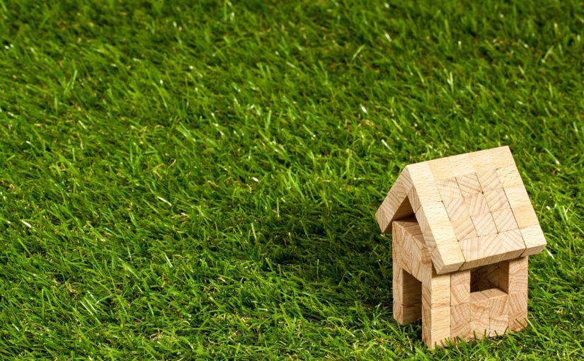 zielone dachy mchy